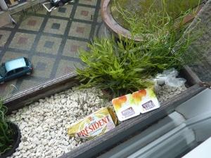 Le frigo dans la jardinière… on ne perd pas nos habitudes de routards ! ;-)