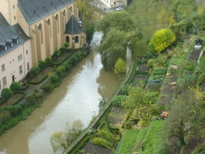 Jardins potagers le long de l'Alzette