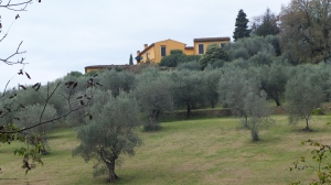 Paysages toscans à quelques kilomètres du centre de Florence :-)