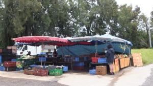 Petit arrêt à un stand de fruits et légumes au bord de la route