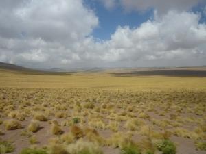 Altiplano, me revoilà !