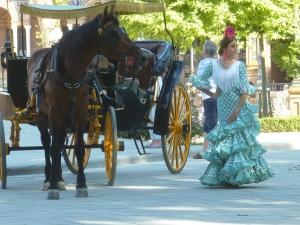 Le cheval était un peu récalcitrant…
