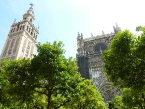 Cathédrale et Giralda vues depuis le patio des orangers