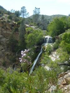 South Creeek Falls