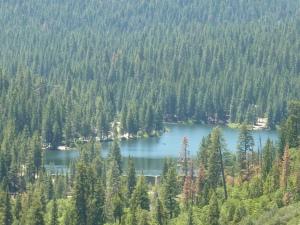 Hume Lake, un petit lac caché dans les pins...