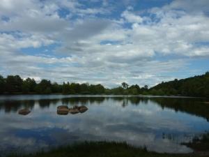 L'étang de la Marette