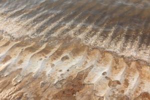 Concrétions salines au bord de l'eau