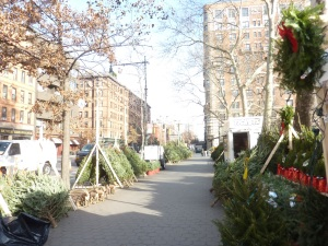 Les sapins de Noël sont de sortie sur les trottoirs de NYC !
