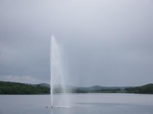 DSCF6759 Un grand lac, le Forstevann, occupe une partie de la ville. Il y a même un petit jet d'eau.