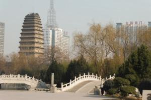 Petite pagode de l'oie sauvage