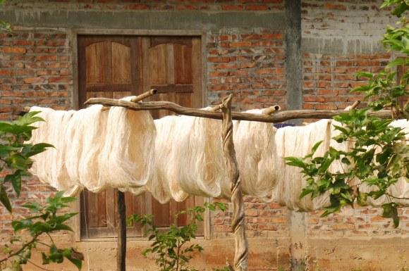 Les nouilles de riz sèchent au soleil