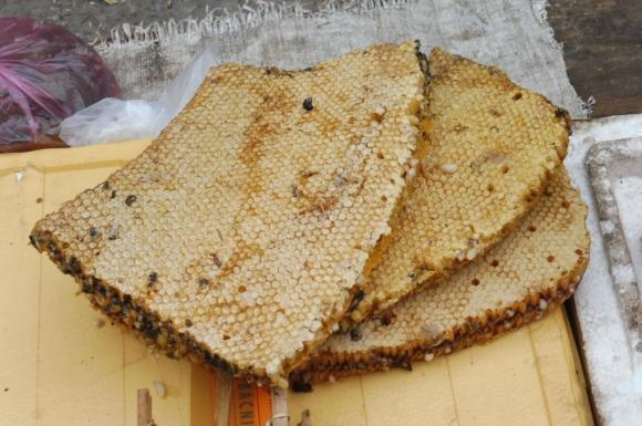 Le miel est vendu directement avec les rayons de la ruche