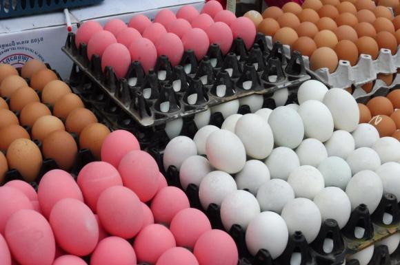 Le mystère des œufs roses...