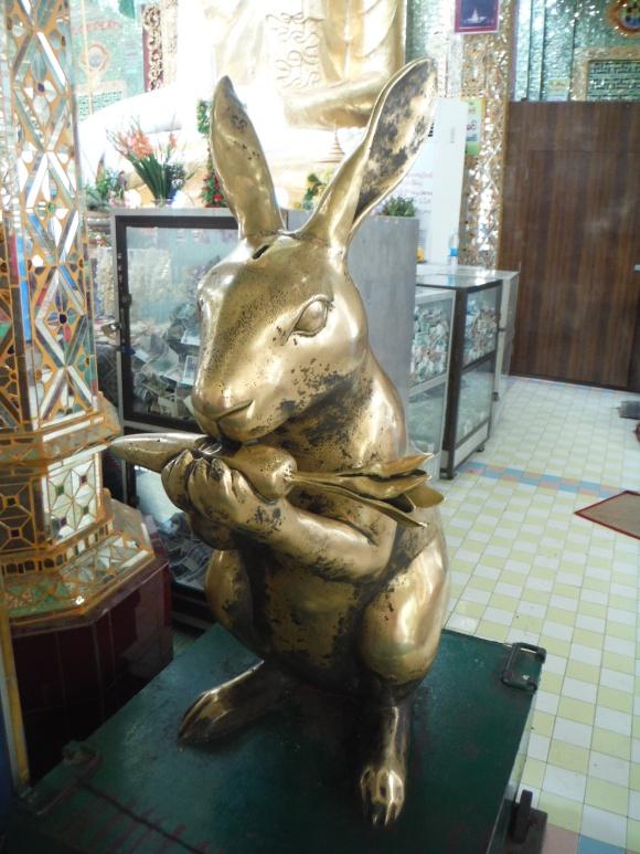 Dans la pagode, un lapin croque une carotte !