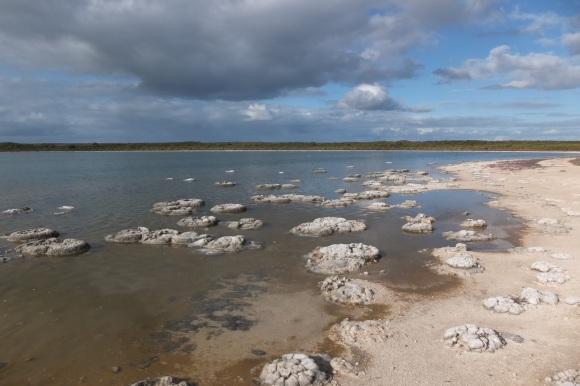 Le lac Thétis et ses stromatolithes