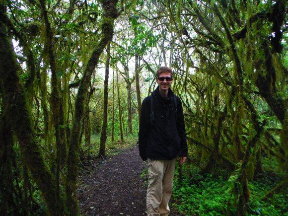 Dans la forêt de Scalesias, paradis des oiseaux