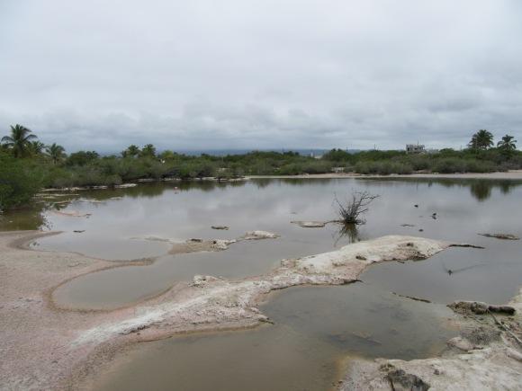 Laguna Salinas