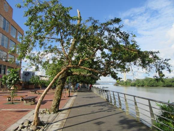 Le malecon longe le rio Napo