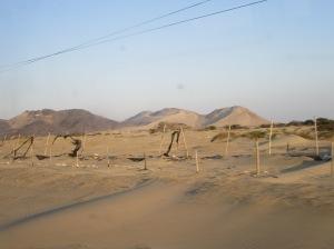 Entre Chiclayo et Trujillo, le désert...