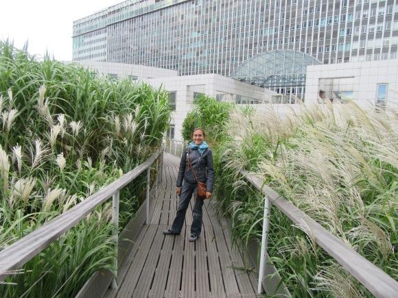 (Re) découverte des jardins suspendus au-dessus de la gare Montparnasse