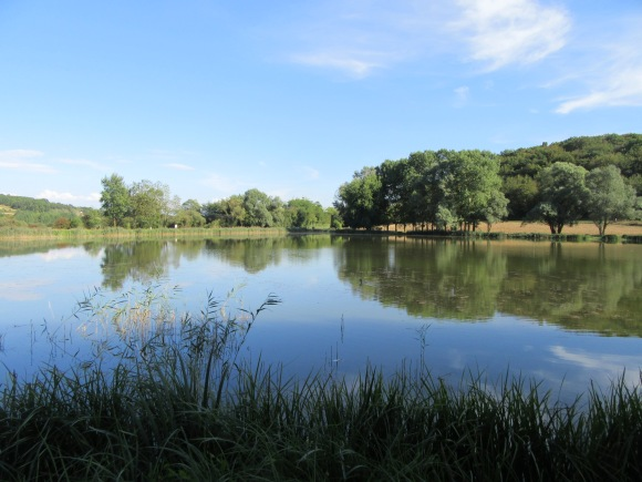 ... avant de filer se mettre au vert dans l'Yonne :-)